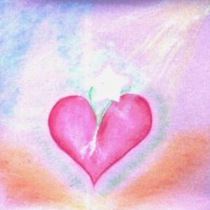 p91g-heart