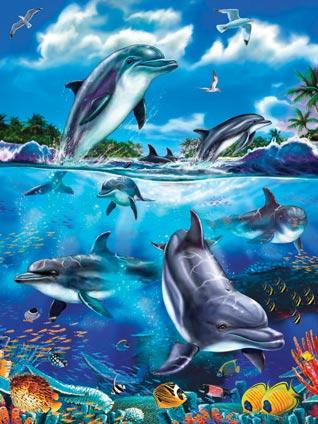 58852-dolphin-fantasy-tray
